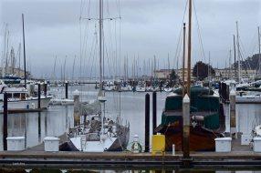 San Francisco's Yacht Harbor
