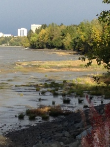 The Tony Knowles Coastal Trail during low tide.  Looking towards the east at Anchorage, AK.