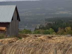 Scenic Farms Along Alaskan HWY British Columbia