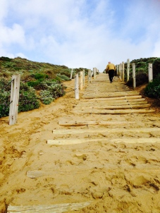 Trails from Baker Beach Bathrooms vary from beachside strolls to high intensity work outs.