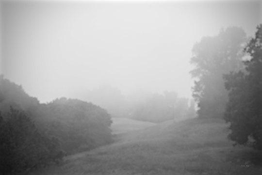 #landscapephotography