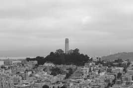 #cityscapes #coittower