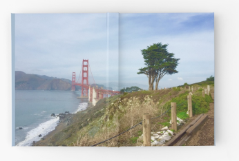 Golden Gate Bridge With Tree Sketch Book Full View
